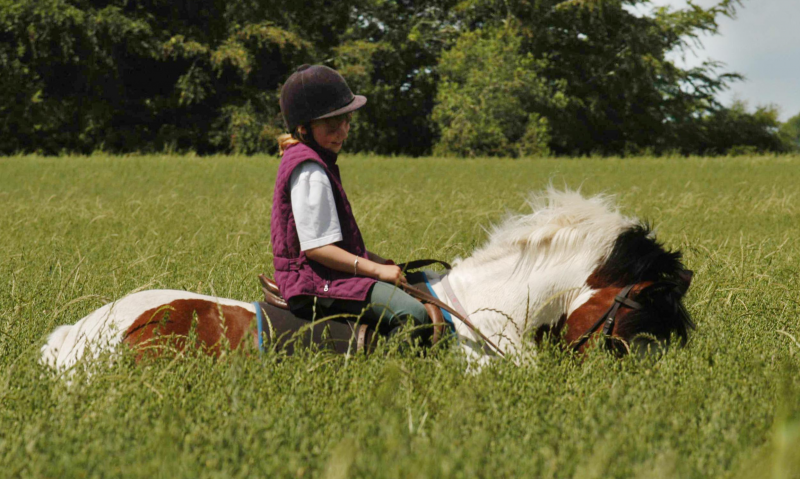 Riding Lesson Term Child Level 3-6 Voucher